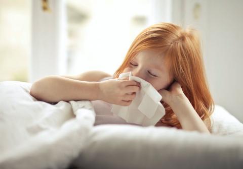 Expectorantes naturales que te ayudarán a aliviar la tos