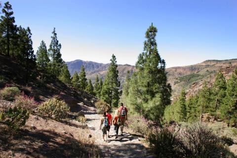 Turismo de naturaleza en Canarias
