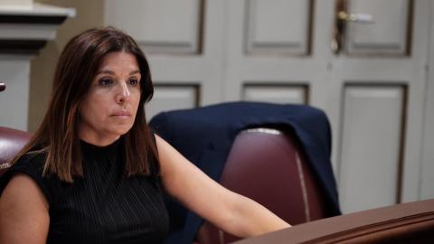 Carmen Hernández, portavoz parlamentaria de Nueva Canarias (NC) en materia social