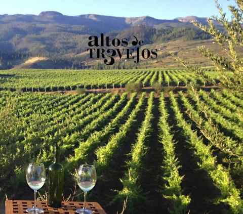 Bodegas Altos de Trevejos, Premio Tenerife Rural/ canariasnoticias.es 13122020