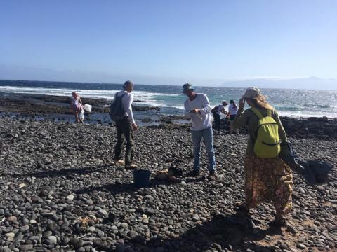 Limpiando el litoral de La Gomera/ canariasnoticias.es