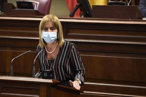 Esther González,  portavoz parlamentaria de Nueva Canarias (NC) en materia económica / CanariasNoticias.es