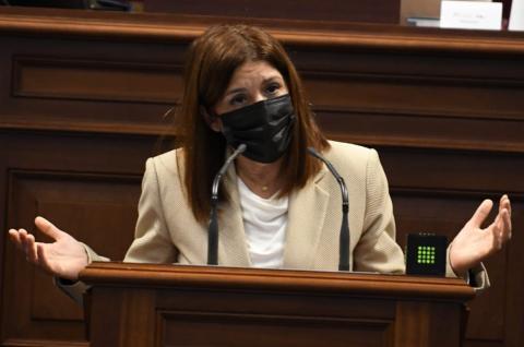 Carmen Hernández en el Parlamento de Canarias / CanariasNoticias.es