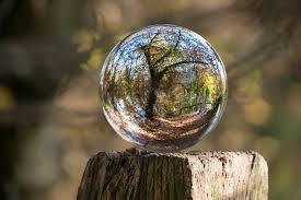 Opina Alicia Collado: estafa con la bola de cristal
