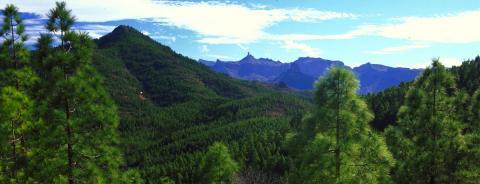 Cumbres de Gran Canaria / CanariasNoticias.es