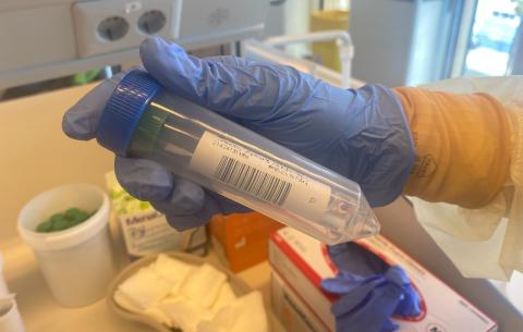 Pruebas PCR / CanariasNoticias.es