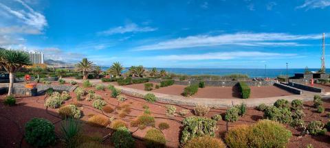 Camping de Punta del Hidalgo en La Laguna (Tenerife) / CanariasNoticias.es