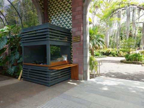 Jardín Botánico de La Orotava (Tenerife) / CanariasNoticias.es