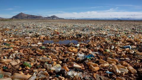 Lago Uru Uru. Bolivia. Contaminación
