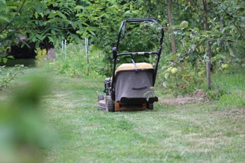 Las mejores máquinas para jardines y huertos