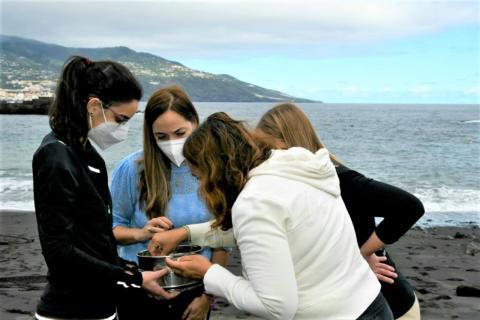 Microplásticos en el mar. La Palma/ canariasnoticias