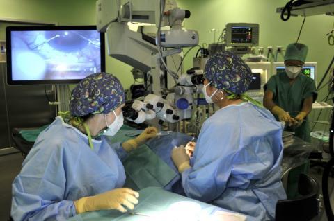 Intervención quirúrgica/ canariasnoticias