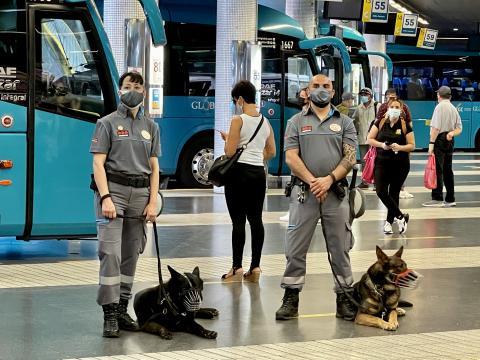 Presentación de la Unidad Canina de las Estaciones en Las Palmas de Gran Canaria, / CanariasNoticias.es