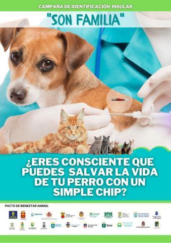 Mascotas/ canariasnoticias