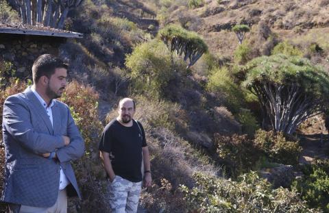 El Cabildo de La Palma lleva la electricidad a Buracas en Garafía (La Palma) / CanariasNoticias.es