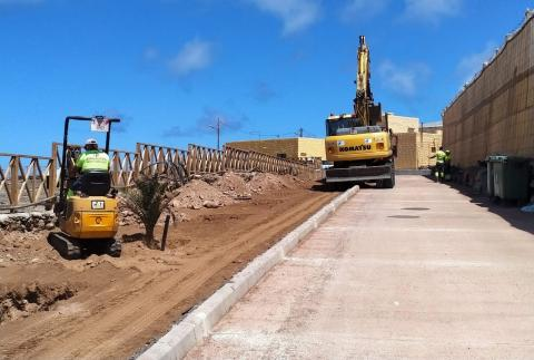 Plantación del entorno de La Guancha en Gáldar / CanariasNoticias.es