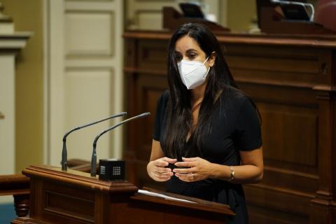 Vidina Espino, en el Parlamento de Canarias / CanariasNoticias.es